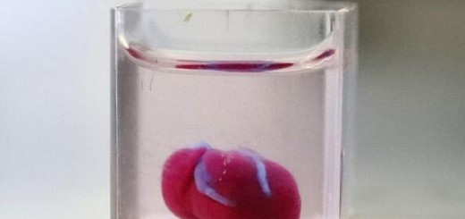 3D printed heart with human tissue